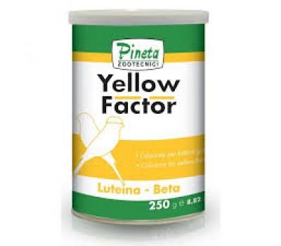 Pineta Yellow Factor