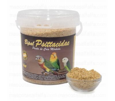 Pasta de cria Bipal Psittacidae