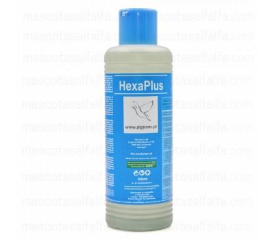 HexaPlus