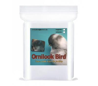 Ornilook Bird Adhesivo - Espejo para la preparación aves