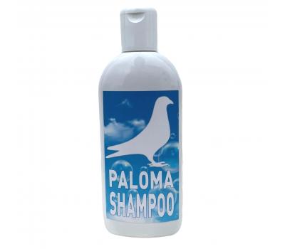 PALOMA SHAMPOO