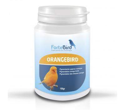 OrangeBird - Para canarios  Norwich y Yorkshire