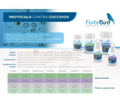 Pack Protocolo contra coccidios