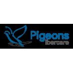 Pigeons Ibercare