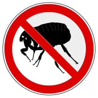Antiparasitario & Insecticida