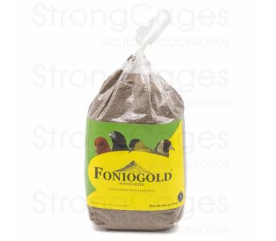fonio gold - coccidiosis