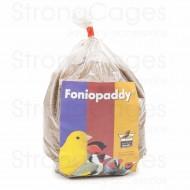 Fonio Paddy 1 Kg