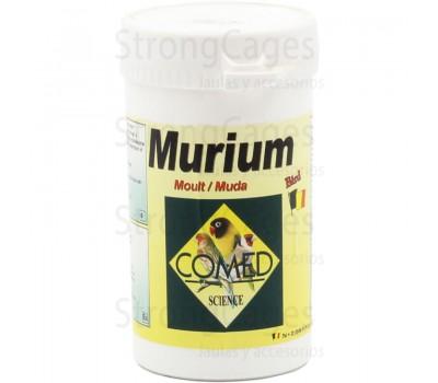 Murium bird | muda - plumaje - Metabolismo