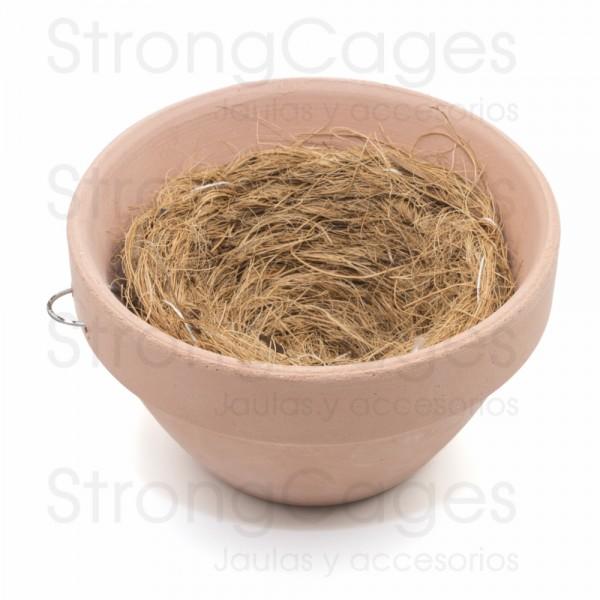 Conjunto nido silvestrismo natural