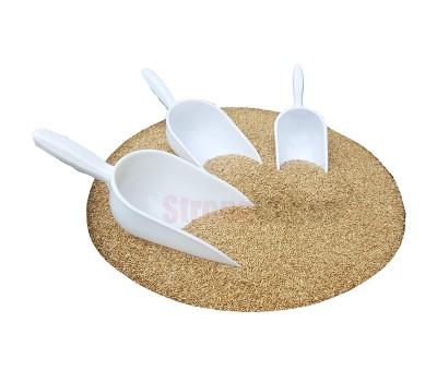 Paleta semillero