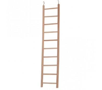 Ladder for parrots