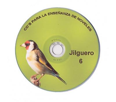 jilguero 6