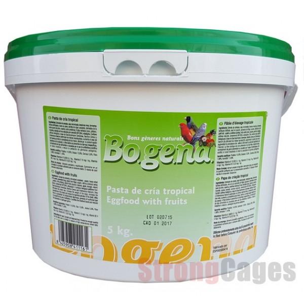 Bogena pasta de cría tropical