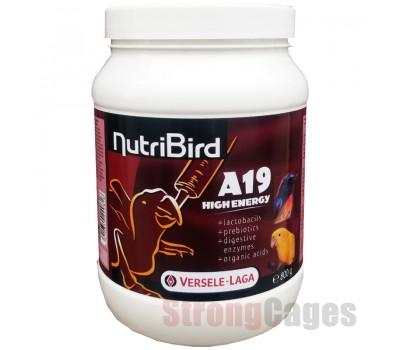 Nutribird A19 High Energy
