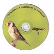 jilguero 4