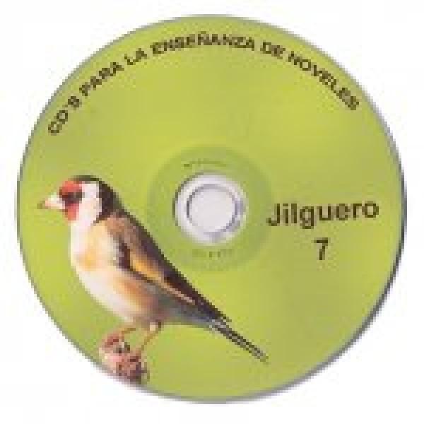 jilguero 7