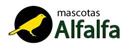 Mascotas Alfalfa